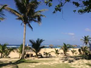 Puraran accommodation bungalow beach